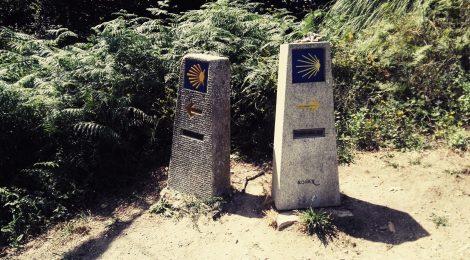 Algunos prefieren disfrutar el camino de Santiago del norte