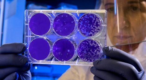 Una enfermedad creciendo por el cambio y un equipo dedicado a erradicarla